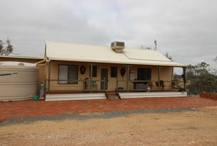 8870 Goyder Highway, Morgan, SA 5320