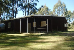 207 Bradys Lake Road, Bradys Lake, Tas 7140