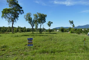 21 Tranquil Court, Cardwell, Qld 4849