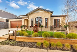 16 Tanker View Rise, St Leonards, Vic 3223