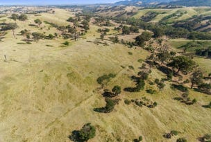 Lot 1 Murchison Spur Road, Reedy Creek, Vic 3658