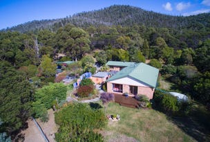 21384 Tasman Highway, Four Mile Creek, Tas 7215