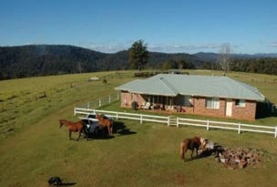 116 Mollydale Road, Tyringham, NSW 2453