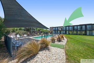 59/50 Peter Thomson Drive, Fingal, Vic 3939