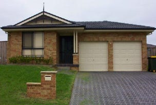 1 Snowgum Street, Acacia Gardens, NSW 2763