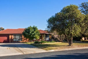 3 Dodwell Crescent, Forest Hill, NSW 2651