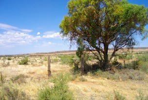 Section 122 McConville Road, Quorn, SA 5433