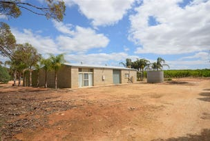 111 Greenways Road, Nildottie, SA 5238