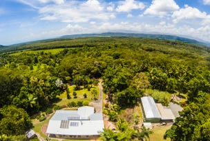 137 George Road, Daintree, Qld 4873