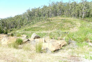 Lot 20 Forest Heights Drive, Tugrah, Tas 7310