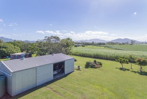 41 Victoria Plains Road, Victoria Plains, Qld 4751