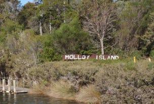 48 Sabina Drive, Molloy Island, WA 6290