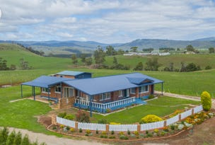 246 Racecourse Road, Winnaleah, Tas 7265