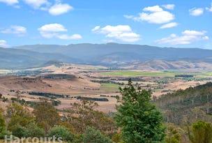79 Sonners Road, Black Hills, Tas 7140