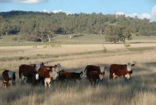 0000 Kamilaroi Highway, Quirindi, NSW 2343
