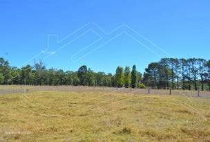 Lot 99 Lot 99 East Nannup Road, Nannup, WA 6275