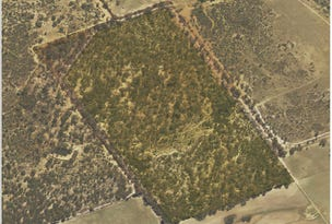 Lot 13954, MINCHIN ROAD, Quairading, WA 6383