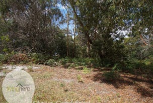 60 North Ansons Road, Ansons Bay, Tas 7264