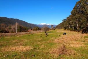1040 Great Alpine Road, Freeburgh, Vic 3741