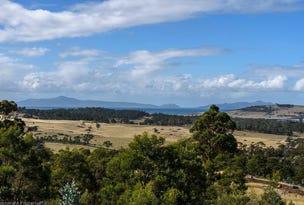 31 Bresnehans Road, Little Swanport, Tas 7190