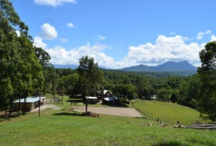 241 Mount Burrell Rd, Nimbin, NSW 2480