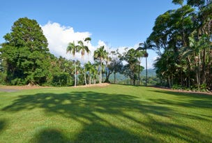 #771 Tomewin Mountain Road, Currumbin Valley, Qld 4223