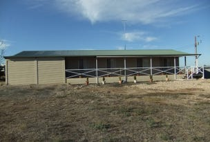 301 Pink Lake Road, Yorketown, SA 5576
