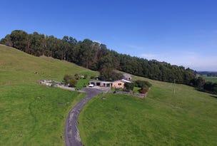 1549 Trowutta Road, Edith Creek, Tas 7330