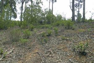 24 Bunderra Circuit, Lilli Pilli, NSW 2536
