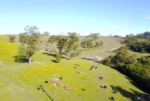 513, 530 & Lot 1 Chichester Road, CHICHESTER VIA, Dungog, NSW 2420