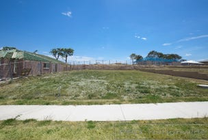 Lot 421 Billabong Parade, Chisholm, NSW 2322