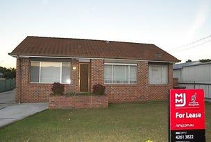 39 Marshall Street, Dapto, NSW 2530