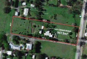 163 Cedar Road, Redbank Plains, Qld 4301