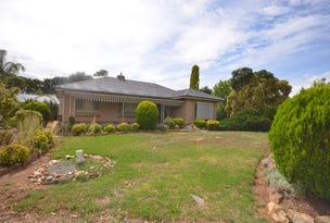 206 Lally Rd, Hill River, SA 5453