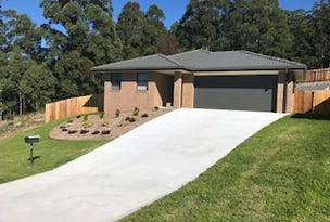 22 Mountain Spring Drive, Kendall, NSW 2439