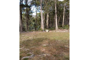 Lot 3, Elephant Pass Road, St Marys, Tas 7215