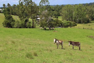 128 Curramore Road, Maleny, Qld 4552