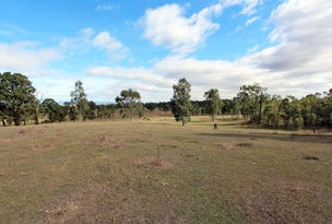 224 Retreat Road, Singleton, NSW 2330