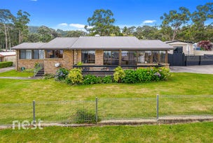 37 Big Roaring Beach Road, Surveyors Bay, Tas 7116