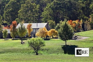 Lot 1/2487 Mt Buller Road, Mansfield, Vic 3722