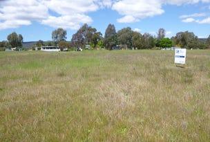 Lot 2 Crescent Street, Koorawatha, NSW 2807