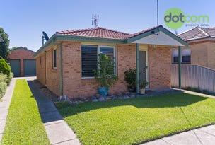 38 Tighe Street, Waratah, NSW 2298
