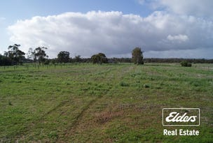 Lots 42,43,44 Clancy Road, Gawler Belt, SA 5118