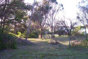 51 Ti-Tree Road, The Pines, SA 5577