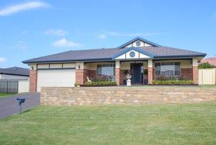 22 Nicholas Conoly Drive, Singleton, NSW 2330