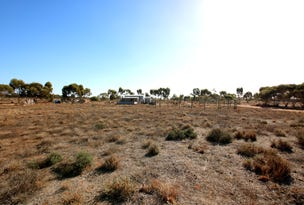 690A Thiele Road, Loveday, SA 5345