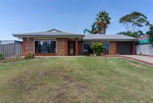 17 Huntingdale Rd, Noarlunga Downs, SA 5168