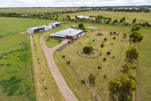 1019 Wingeel Road, Wingeel, Vic 3321