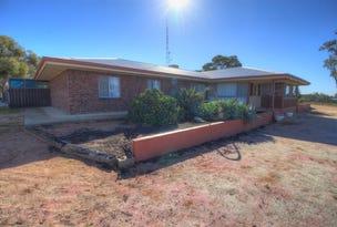 394 Winkie Road, Winkie, SA 5343