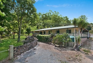 1154 Numinbah Road, Crystal Creek, NSW 2484